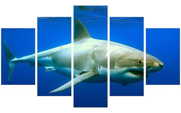 Painel Mosaico Decorativo em 5 partes - Tubarão