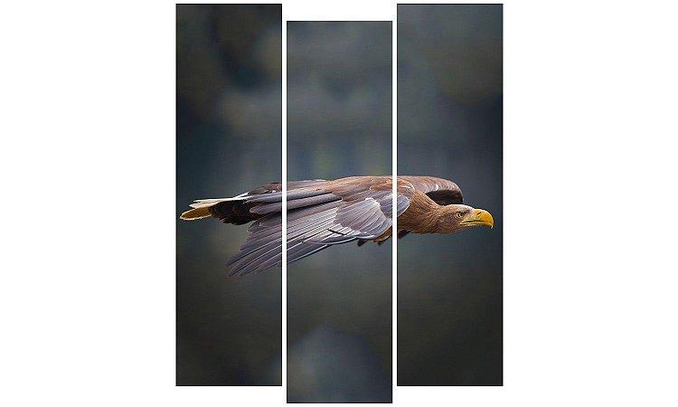 Painel Mosaico Decorativo em 3 partes - Águia Voando