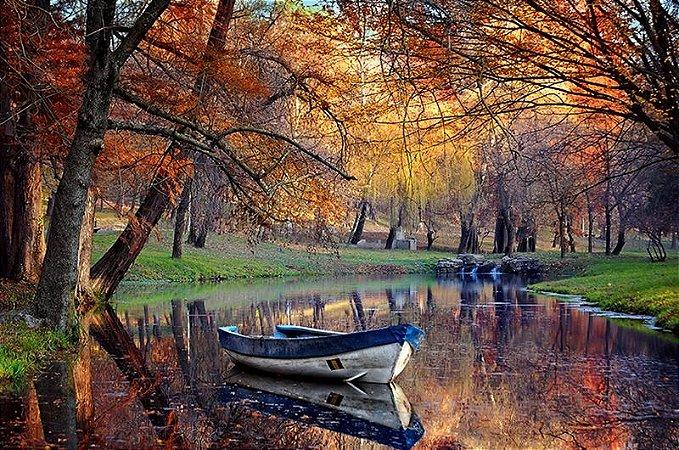 Papel de Parede fotográfico - Paisagem colorida do outono - PA044