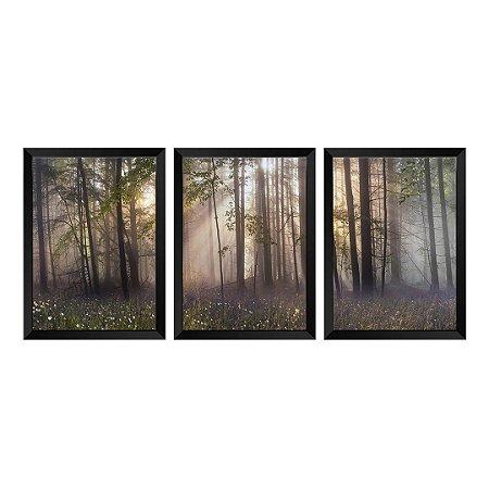 Kit de 3 Quadros Amanhecer na Floresta
