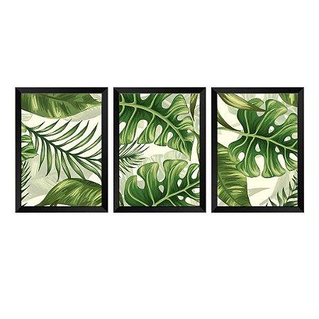 Kit de 3 Quadros Palmeira Tropical