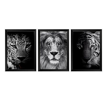 Kit de 3 Quadros Onça, Leão e Tigre