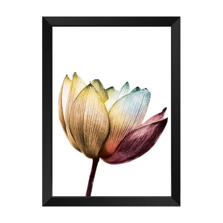 Quadro Flor Elegance Alegria