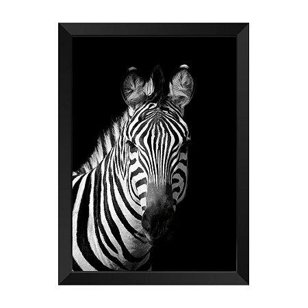 Quadro Zebra P&B