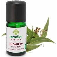 Óleo Essencial de Eucalipto Citriodora 10ml | Terra Flor