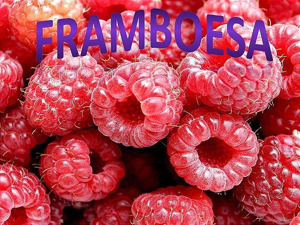 Líquido  Framboesa e-Health