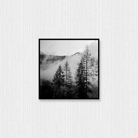Quadro Decorativo Neblina na Floresta