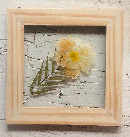 Quadro de Flores Naturais - flor amarela