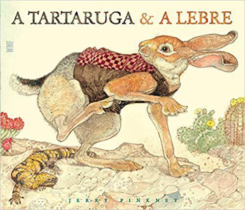 TARTARUGA E A LEBRE, A