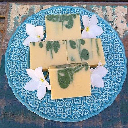 Sabonete e Xampu Sólido - Castanha/Pracaxi/Coco/Oliva - Óleos Essenciais Capim Limão/Melaleuca/Menta 130g