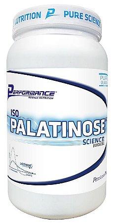 ISO PALATINOSE - PERFORMANCE NUTRITION