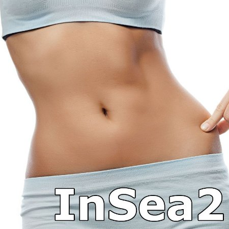 Insea2 (Emagrecedor) 250 mg - 60 Capsulas