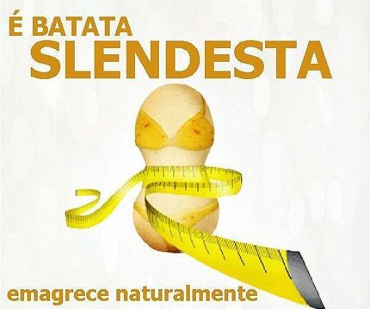 SLENDESTA (Sem fome e feliz !) 300 Mg - 60 Capsulas