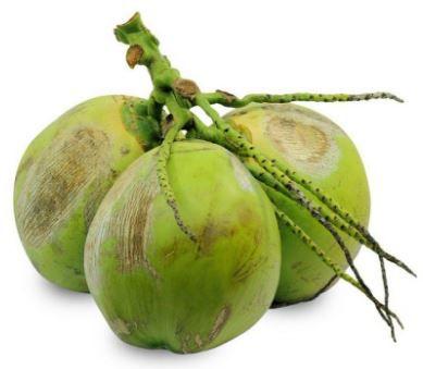 Coco verde - 1un