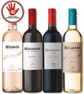 VINHO ARGENTINO - BENJAMIN - 750mL