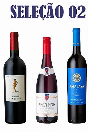 Seleção 02 - Amalaya Malbec + Pierre Labet Pinot Noir + Arrogant Frog GSM RSV
