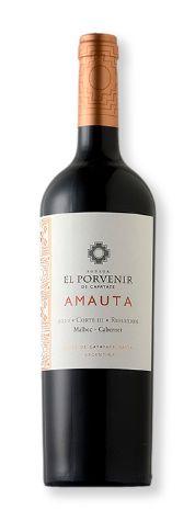 Vinho Tinto El Porvenir Amauta Corte III Reflexión