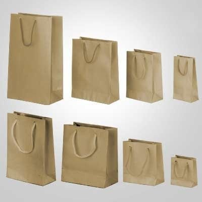 Sacola papel Kraft 20x15 (G) c/10 unid.