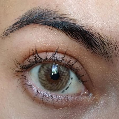 Eclipse Zero Brown
