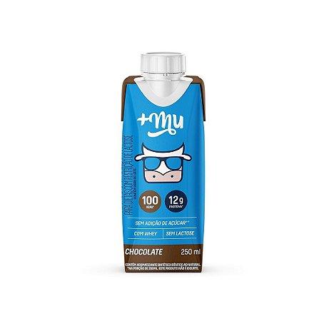 Bebida Láctea Chocolate 250ml