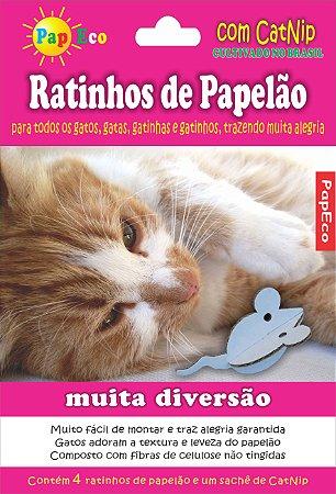 Ratinho Papelão com CatNip