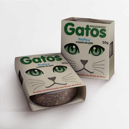 Graminha Gatos