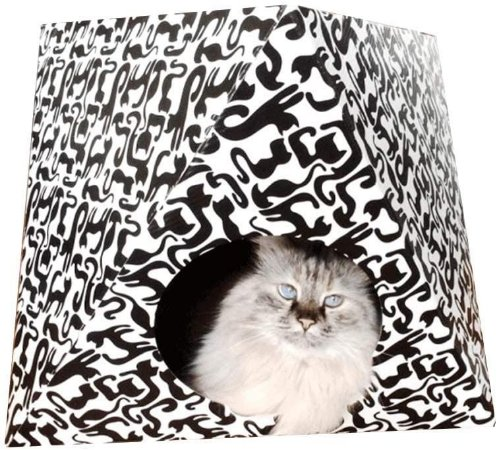 Octa Cat