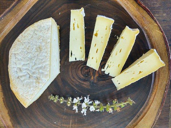 Queijo Sabores do Sitio - O queijo da Lucia - 450g Medalha de Bronze no Mundial da França