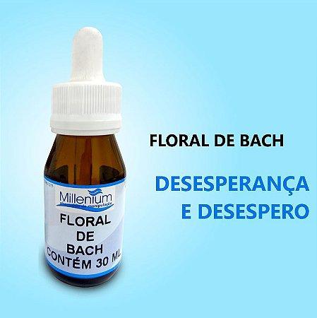 Floral de Bach Desesperança e Desespero