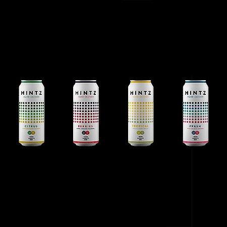 Hintz Mista - 2un de 310ml de cada sabor