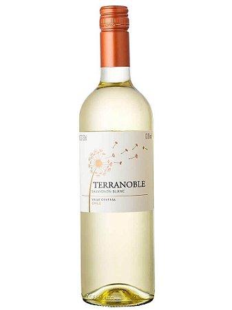 Terranoble Estate Sauvignon Blanc 2019