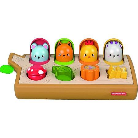 Fisher-Price Animaizinhos Atividades Surpre Mattel