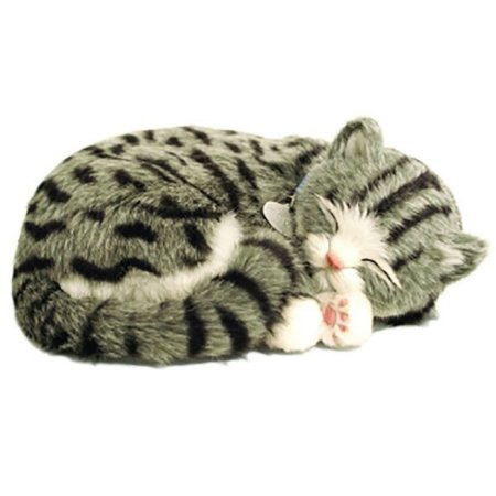 Perfect Petzzz Filhote Gato Gray Tabby Imex