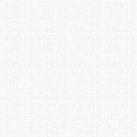 Papel A4 Opaline Telado Branco 180G. Fila Canson