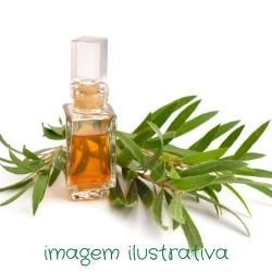 Óleo Vegetal - Tea Tree (Melaleuca artenifolia) - 800gr~800ml
