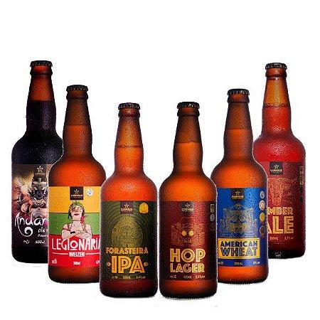 Kit Degustação Cerveja Artesanal 6 Estilos da CAMPINAS