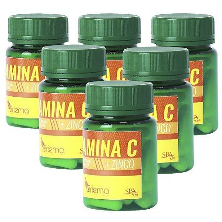 Kit Vitamina C + Zinco 6 UN