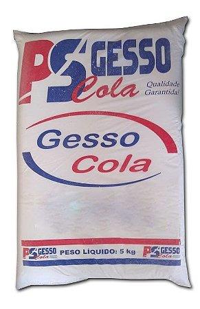 GESSO COLA P S