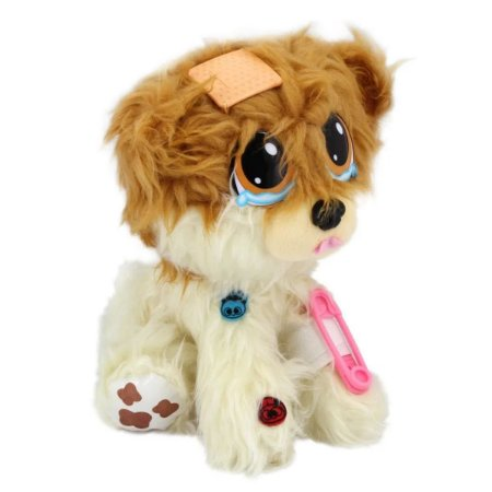 Adota Pets Lulu