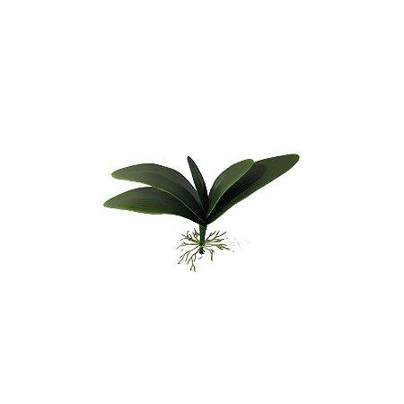 Folha de Orquidea SY01482