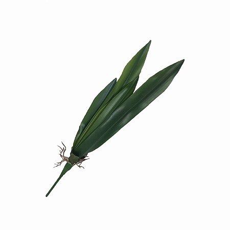 Folha de Orquídea Comprida BG-0008