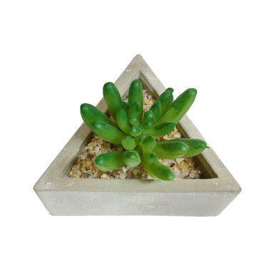 Arranjo de Suculenta Triangular