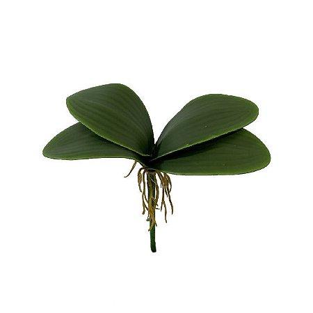 Folha de Orquidea Mini