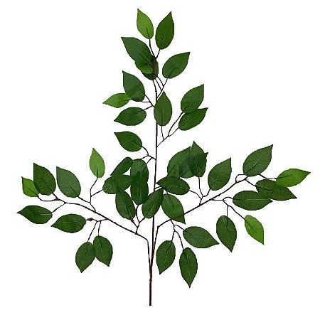 Folha de Ficus EJ-0026