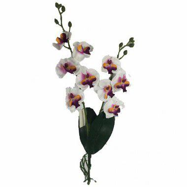 Buque de Orquidea Dona Maria