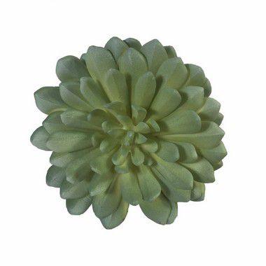 Suculenta Nara 9165-67