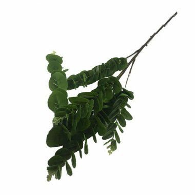 Galho Eucalipto Comprido Yudi AA-0056