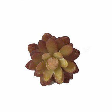 Planta Suculenta DI0121