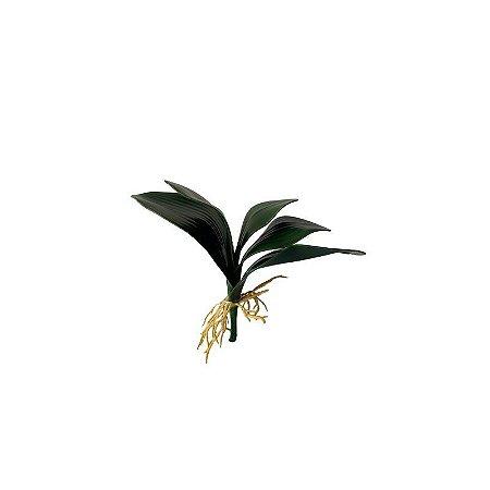 Folha de Orquídea Flavia B3-277-4