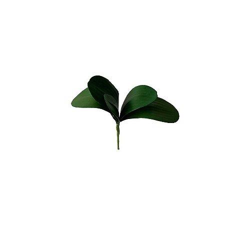 Folha de Orquídea Claudia CR-0041
